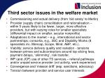 third sector issues in the welfare market