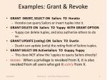 examples grant revoke