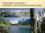 theodore roosevelt yosemite california national park