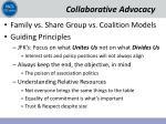 collaborative advocacy