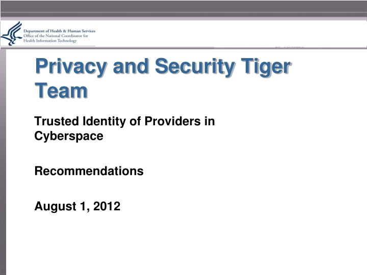 privacy and security tiger team n.