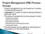 project management pm process groups