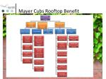 mayer cubs rooftop benefit