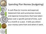 spending plan review budgeting