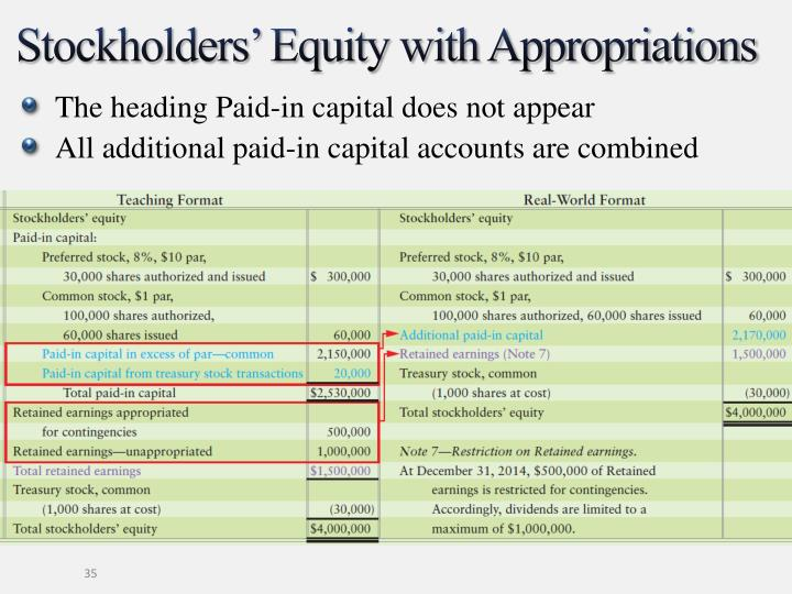 Stockholders' Equity with Appropriations
