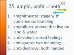 25 amphi ambi both