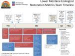 lower montane ecological restoration metrics team timeline