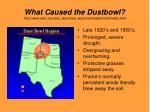 what caused the dustbowl http www weru ksu edu weru new weru multimedia multimedia html