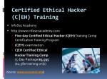 certified ethical hacker c eh training