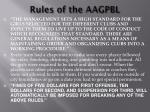 rules of the aagpbl