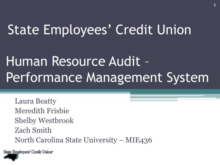 human resource audit performance management system n.