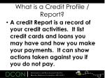 what is a credit profile report