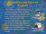 peace4kids and families program3
