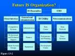 future is organization