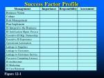 success factor profile