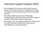 executive support systems ess1