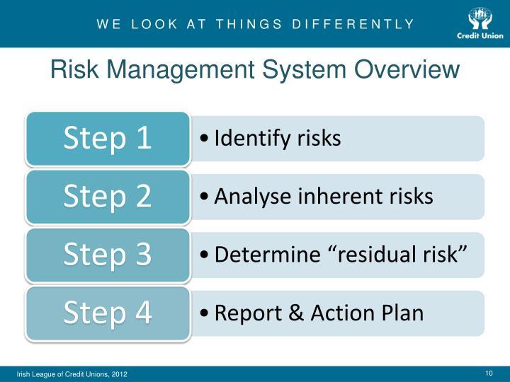 Risk Management System Overview