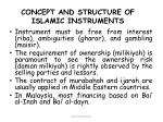concept and structure of islamic instruments