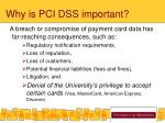 why is pci dss important