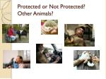 protected or not protected other animals