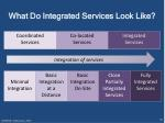 what do integrated services look like