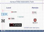 survey of web vulnerability tools