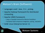 watson s brain software