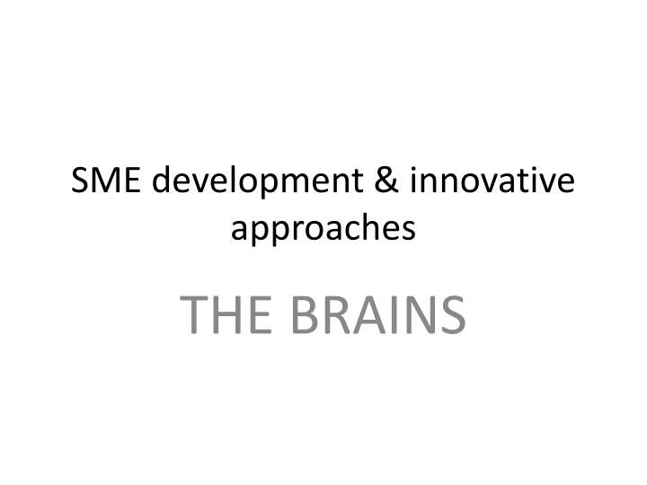 sme development innovative approaches n.
