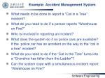 example accident management system