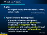 what is agile1