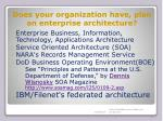 does your organization have plan an enterprise architecture