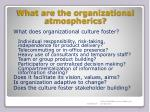 what are the organizational atmospherics1