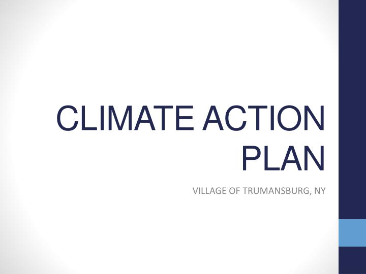 climate action plan n.