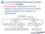 work products work packages and roles