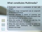 what constitutes multimedia