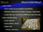 what is user story