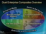 duet enterprise composites overview