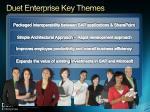 duet enterprise key themes