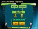 duet enterprise reporting