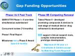 gap funding opportunities