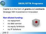 sbir sttr programs