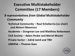 executive multistakeholder committee 17 members1