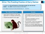 drive the puzzling puzzles of harry harlow