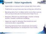 summit vision ingredients
