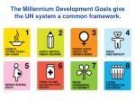 the millennium development goals give the un system a common framework