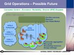 grid operations possible future