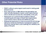 other potential risks
