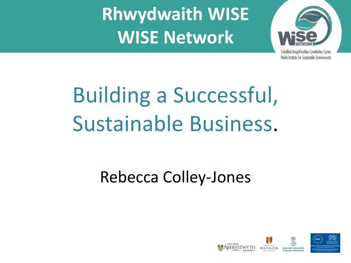 rhwydwaith wise wise network building a successful sustainable business rebecca colley jones n.