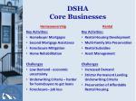 dsha core businesses