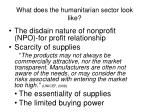 what does the humanitarian sector look like